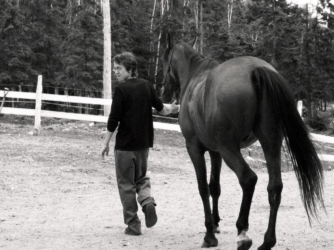 marcher avec son cheval